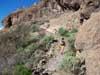 Lanzatrekk Wandern mit Stephan Palma Gran Canaria