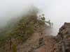 Lanzatrekk Wandern mit Stephan Nebel La Palma